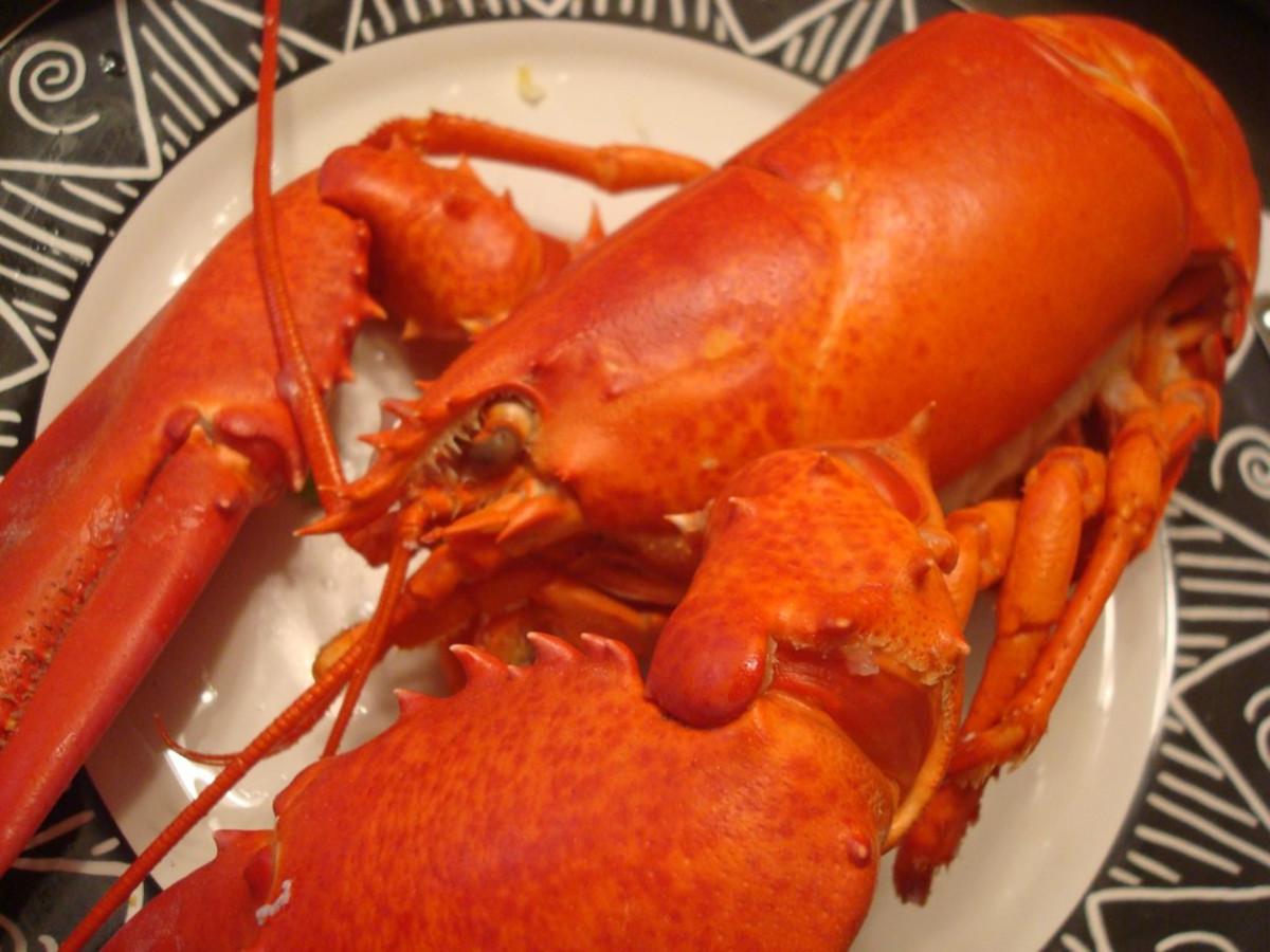 Lobster is healthy seafood!