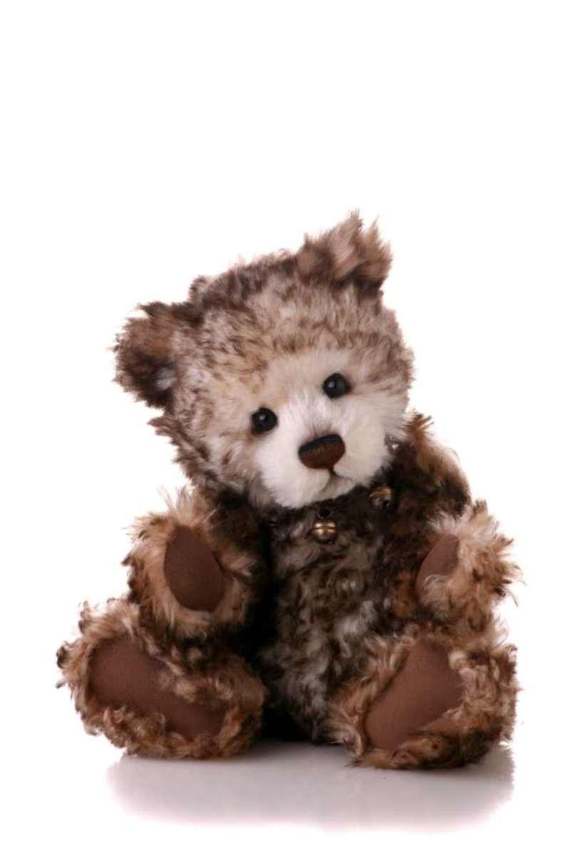 'Betty' is a bear that demands loving