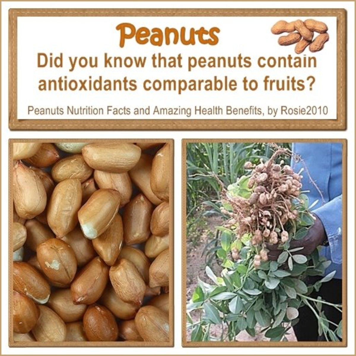 - Peanuts Nutrition Facts and Amazing Health Benefits, by Rosie2010 -