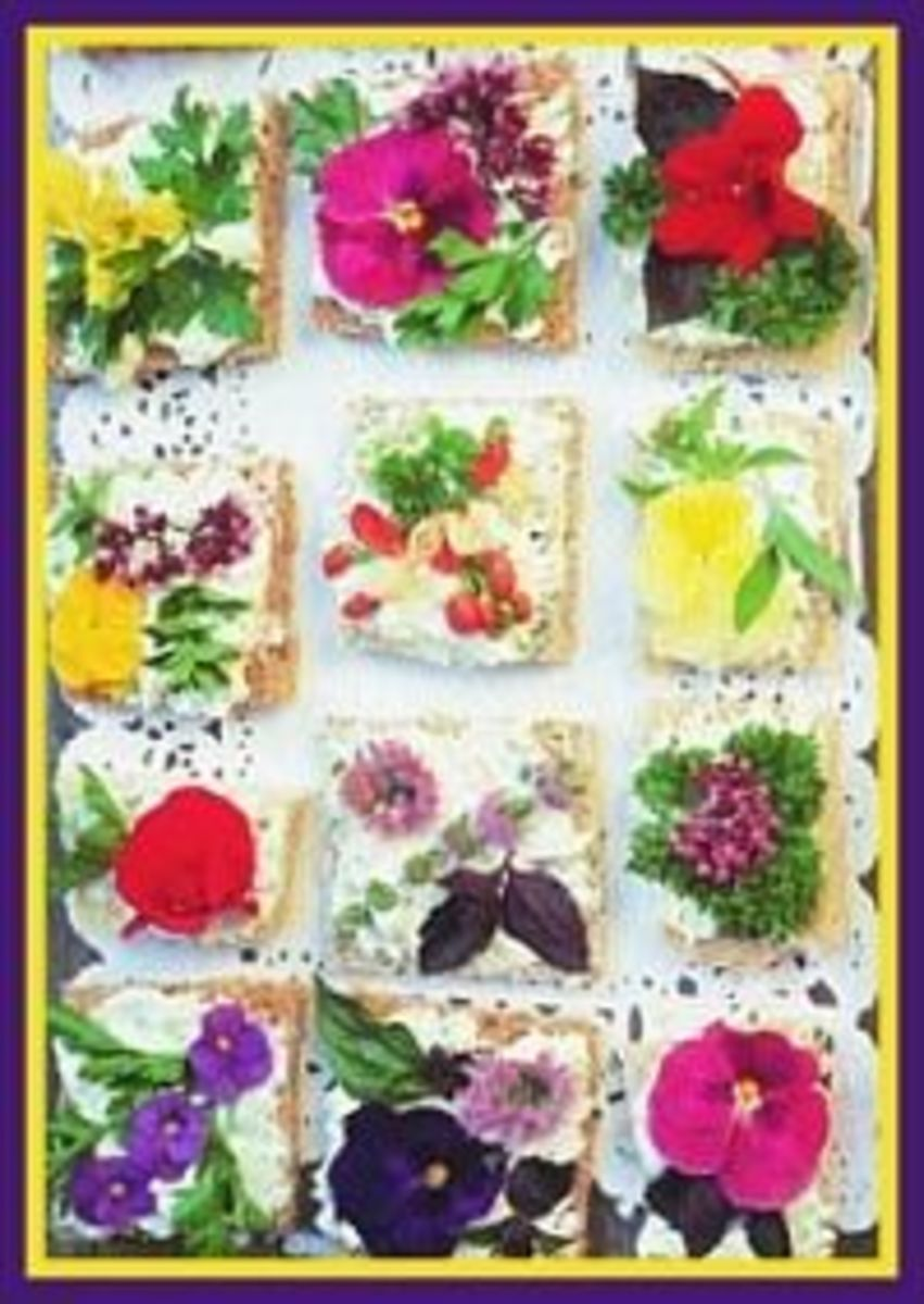 Pansy Flower Canape Recipe
