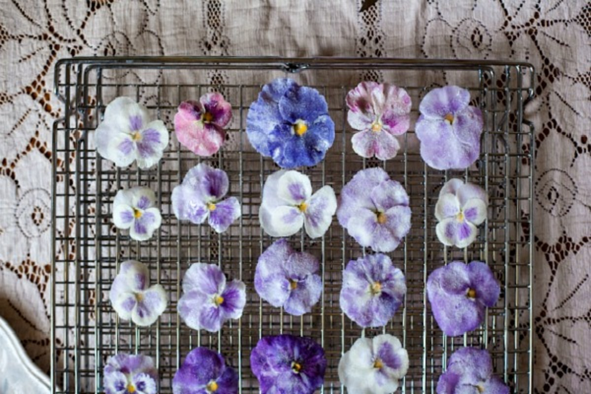 Candied Pansies & Violas