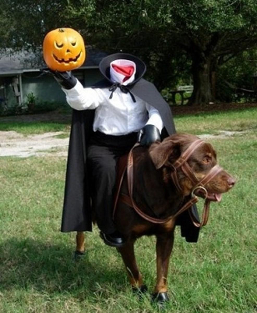Headless Horseman Dog with Pumpkin Head
