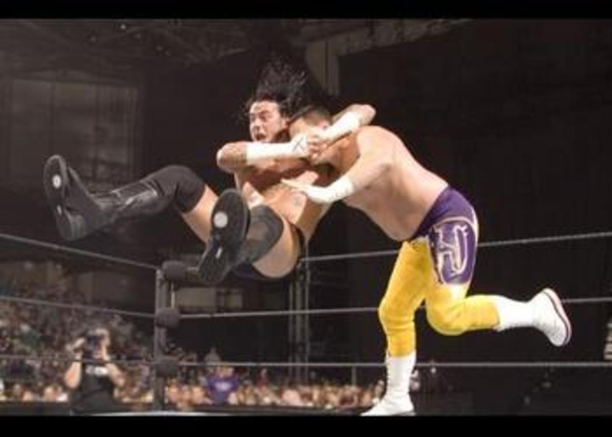 Some wrestling moves are just amazing to watch!