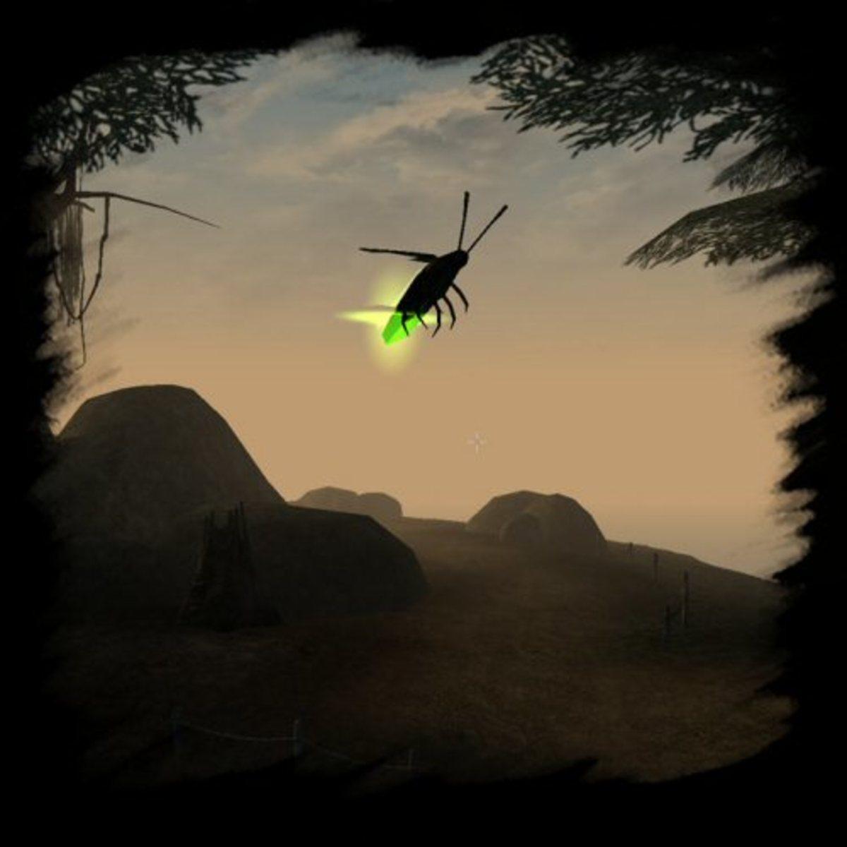 Fire fly in flight