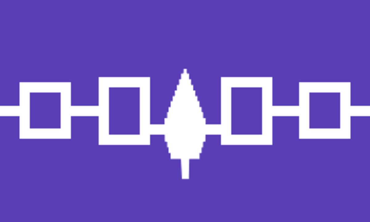 This flag includes the symbol of the Hiawatha Belt, a wampum belt of the original Five- and Six Nation Confederacy. The Peace Tree is in the center.