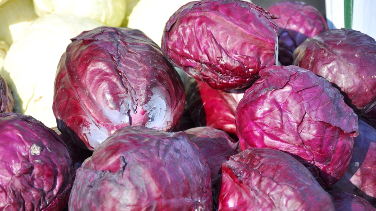 Why Eat Purple Vegetables & Fruits?
