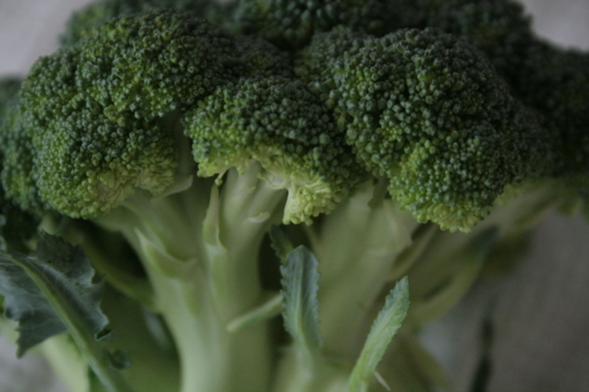 Broccoli is a great natural source of folic acid.