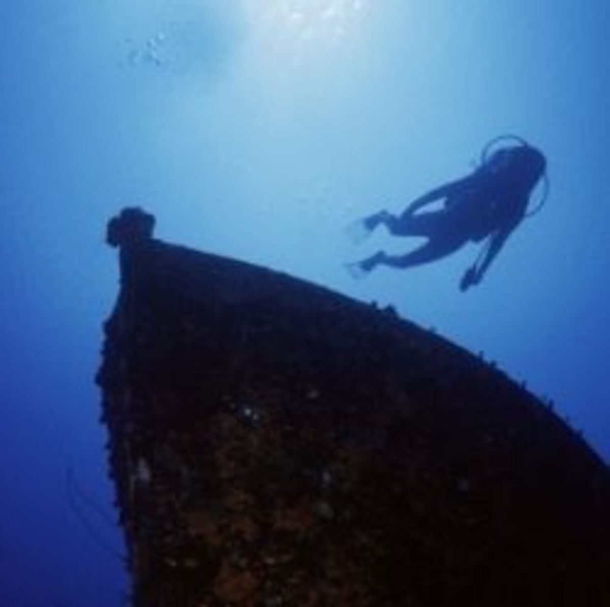 poem analysis of diving into the Diving into the wreck  adrienne rich's poetry and prose norton critical  editions paperback see all options and formats starting at  the result is a  judiciously edited, sensibly annotated volume ideally suited for classroom study  of one of.