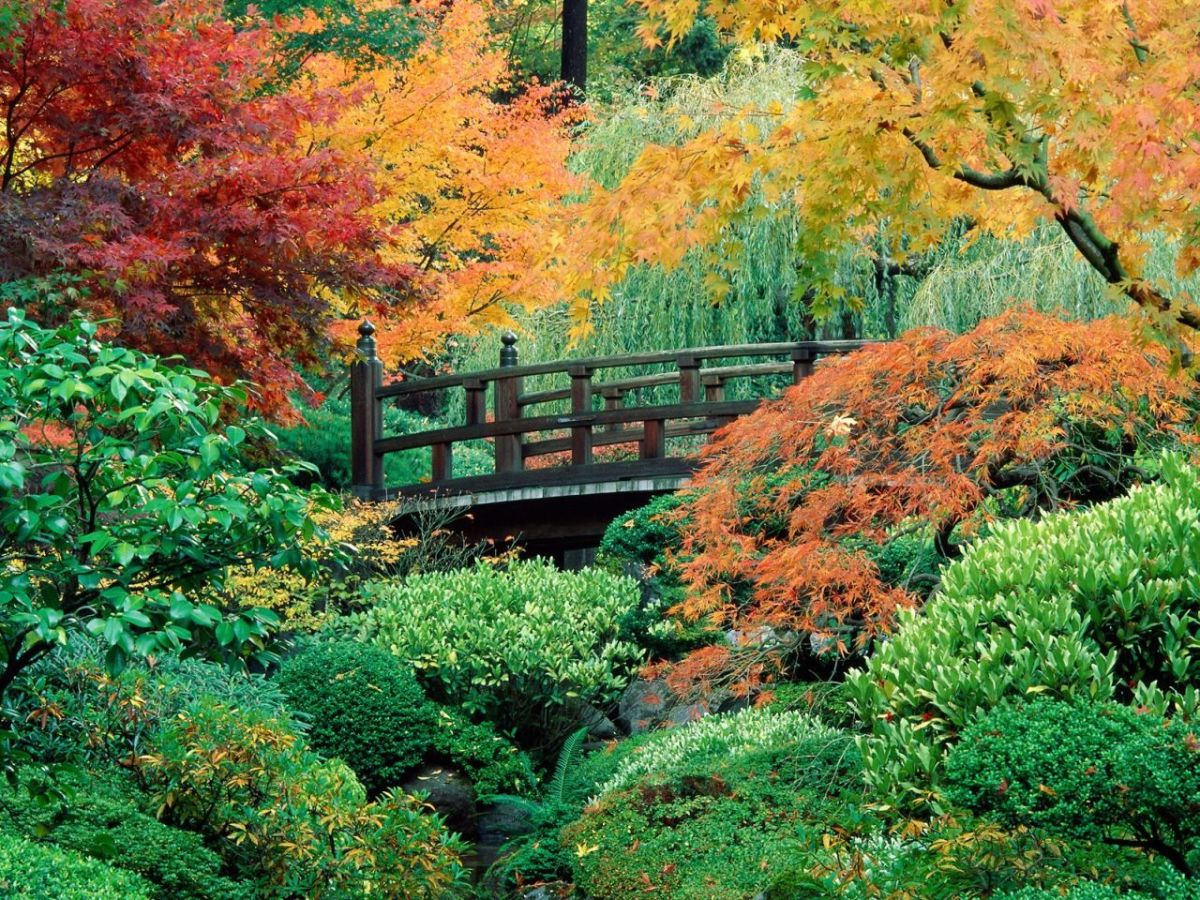 Free Cross Stitch Pattern Bridge in Autumn