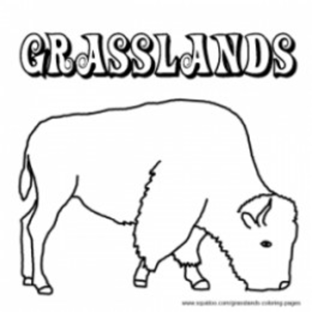 grasslands coloring pages