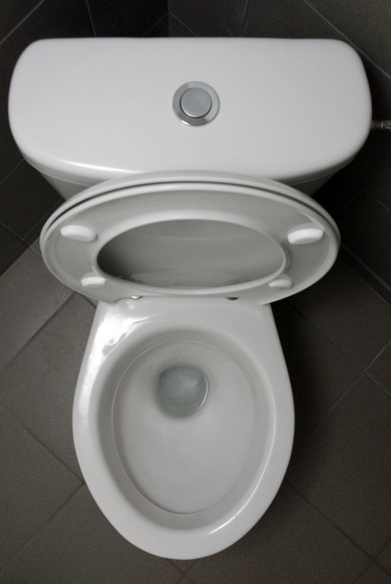 How My 90-Year-Old Mother Fixed theToilet, or, What to Do When Your Toilet Stops Up