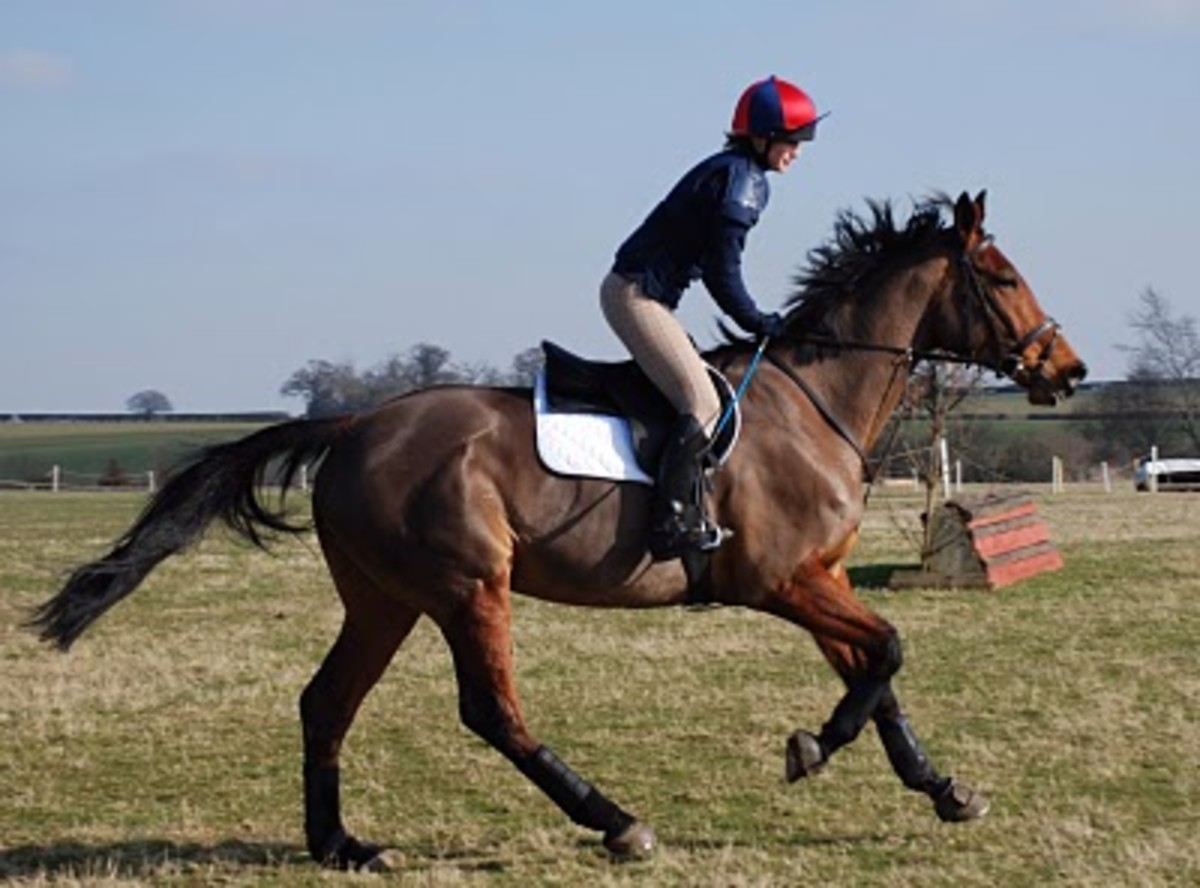 A rider canters round a cross country horse, all the while keeping her ankle in line with her hips
