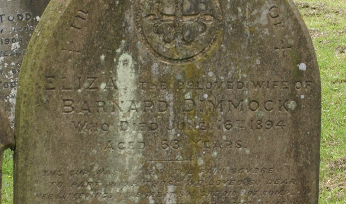 Eliza Dimmock, born about 1831, died 16 Jun 1894