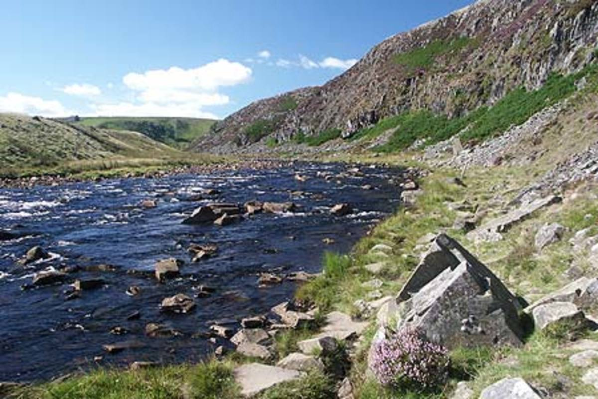 The Tees bends around the base of Falcon Clints, the cliffs that edge the river's high reaches as it rounds the deep gorge from...