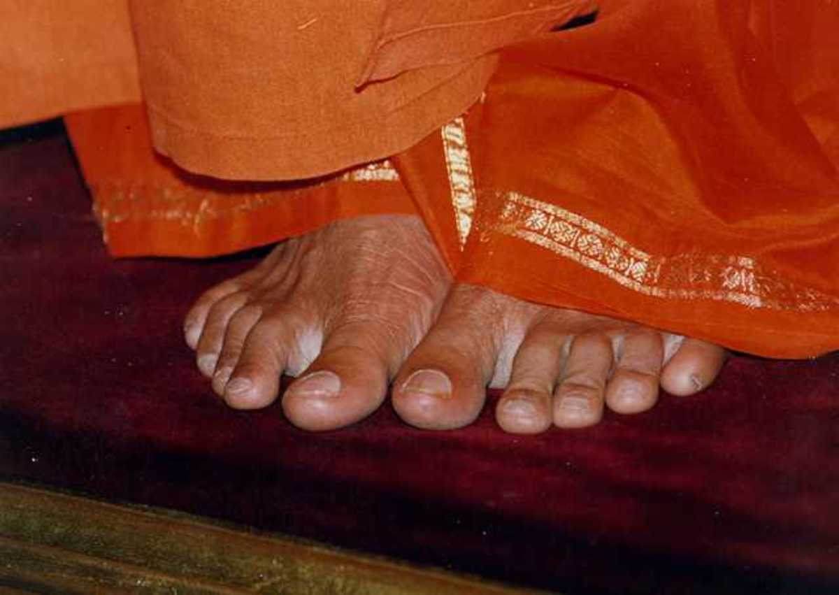 Swimming close to the feet of the Master keeps one safe from the net of Maya or delusion.