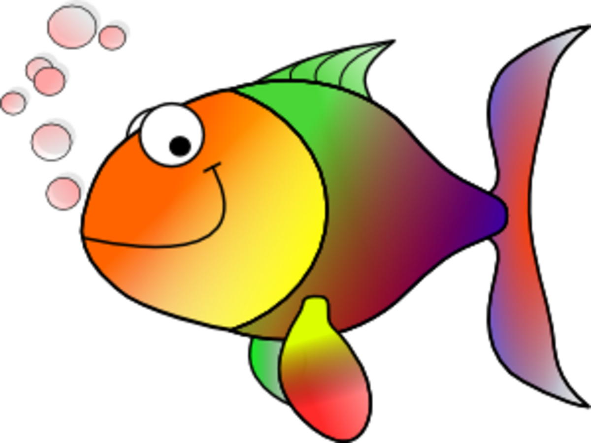 lesson-from-a-fish