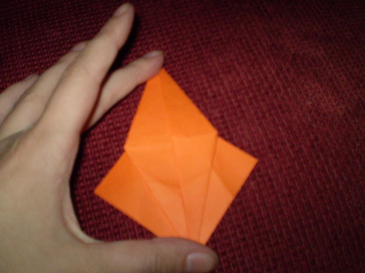 Fixate the folds.