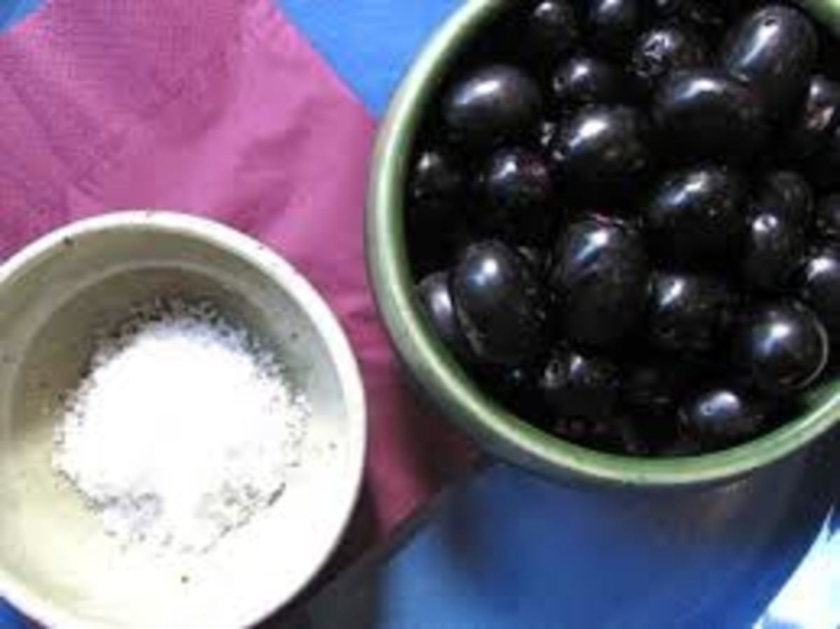 anti bacterial property of duhat syzgium cumini Jambul or jamun or jamblang (syzgium cumini),  they also have anti-bacterial properties and  jamblang, jambolan, black plum, damson plum, duhat.