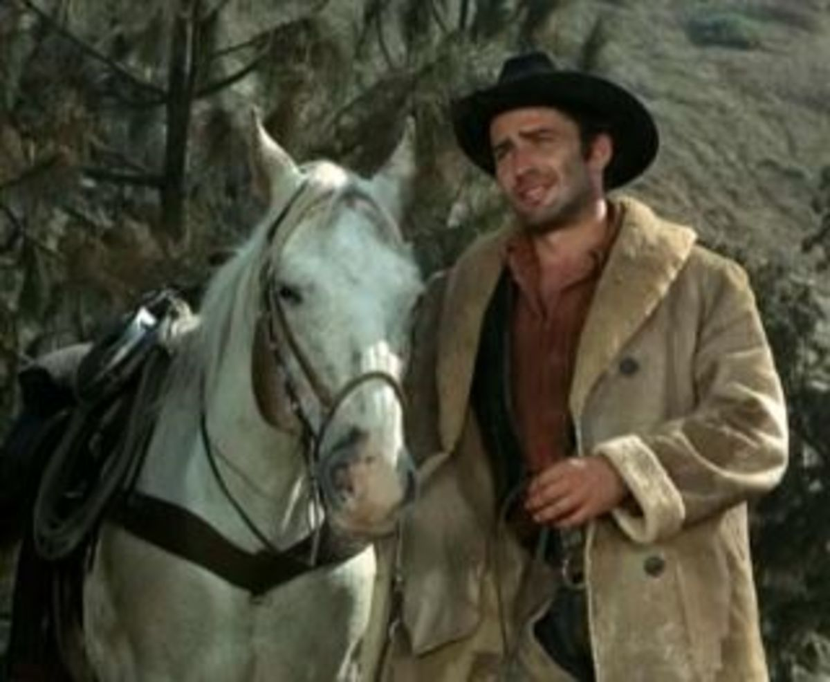 The Virginian was a great western classic. This is a screen shot from show with James Drury as the Virginian and his horse Joe D.