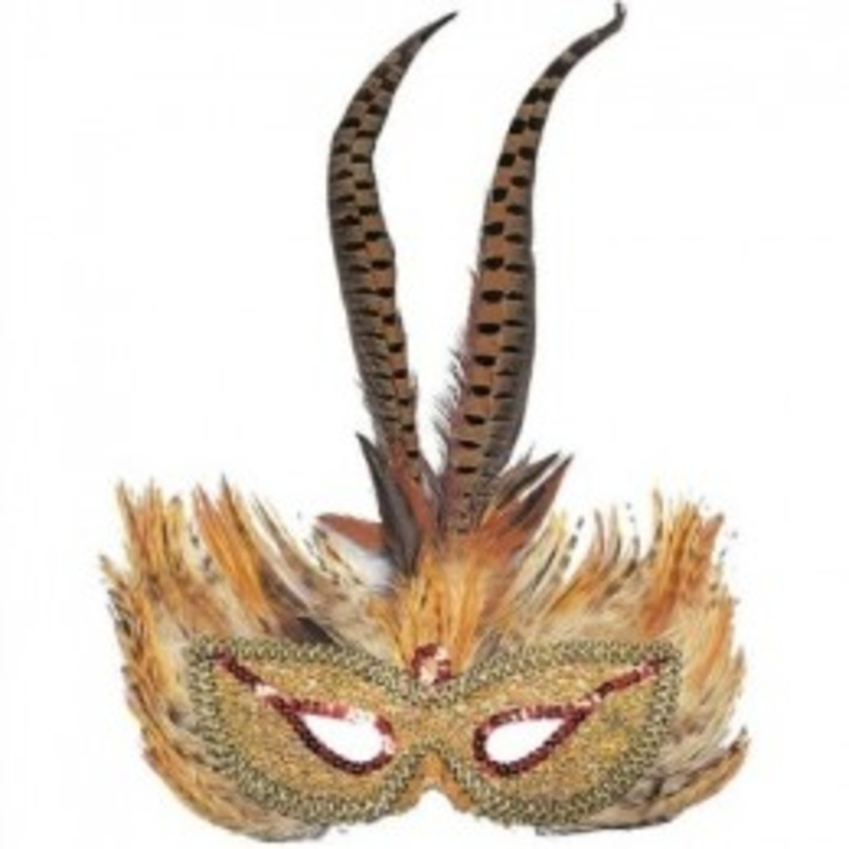 Wear this pheasant feathered mask to the Halloween ball