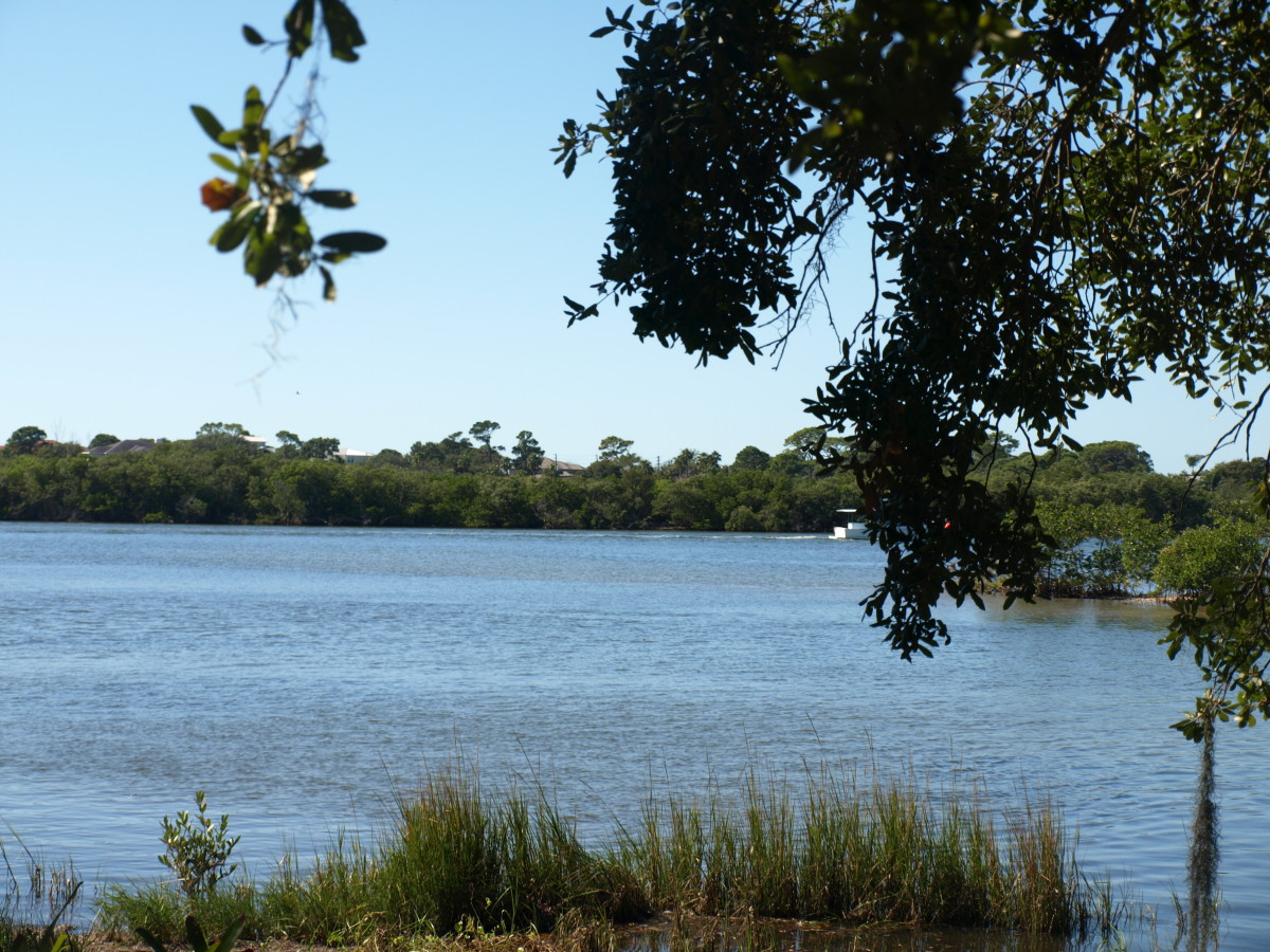 View of the river from Riverside Drive in what was once Anclote.