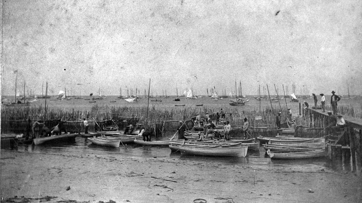 "A part of the Key West sponge fleet is shown. According to Ralph Bellwood, this photograph was taken in ""1893 or a year or two later."""