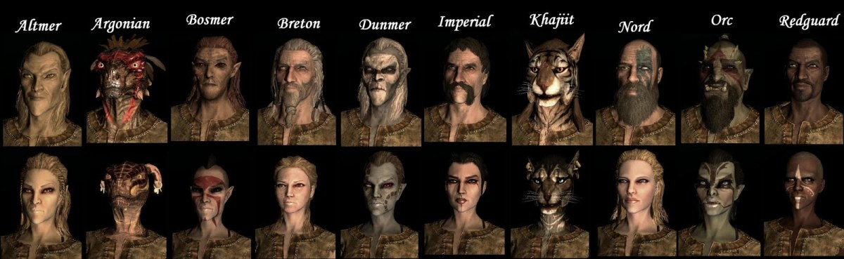 Races In Skyrim The Elder Scrolls V: With A Chart
