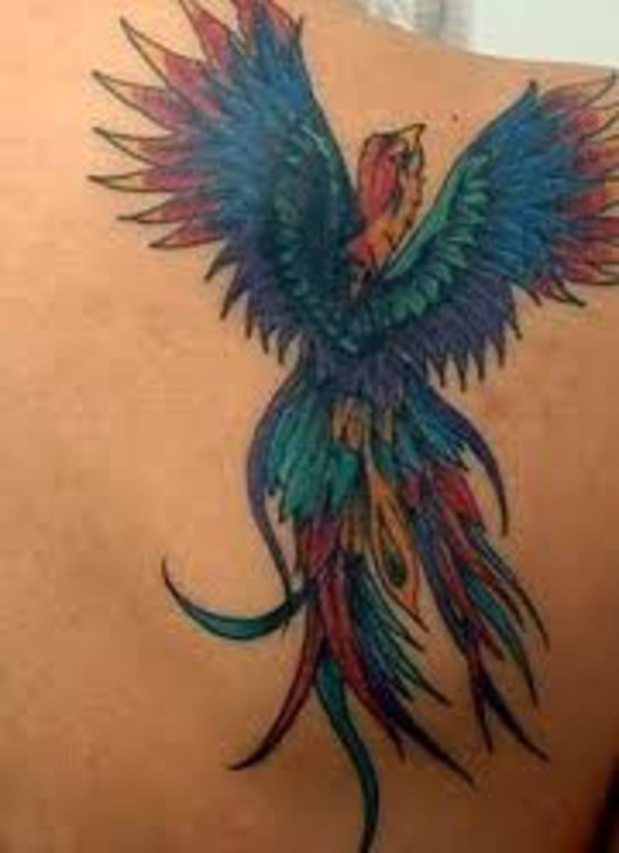 phoenix tattoo designs and meaning phoenix tattoo ideas and pictures phoenix symbolism and history. Black Bedroom Furniture Sets. Home Design Ideas