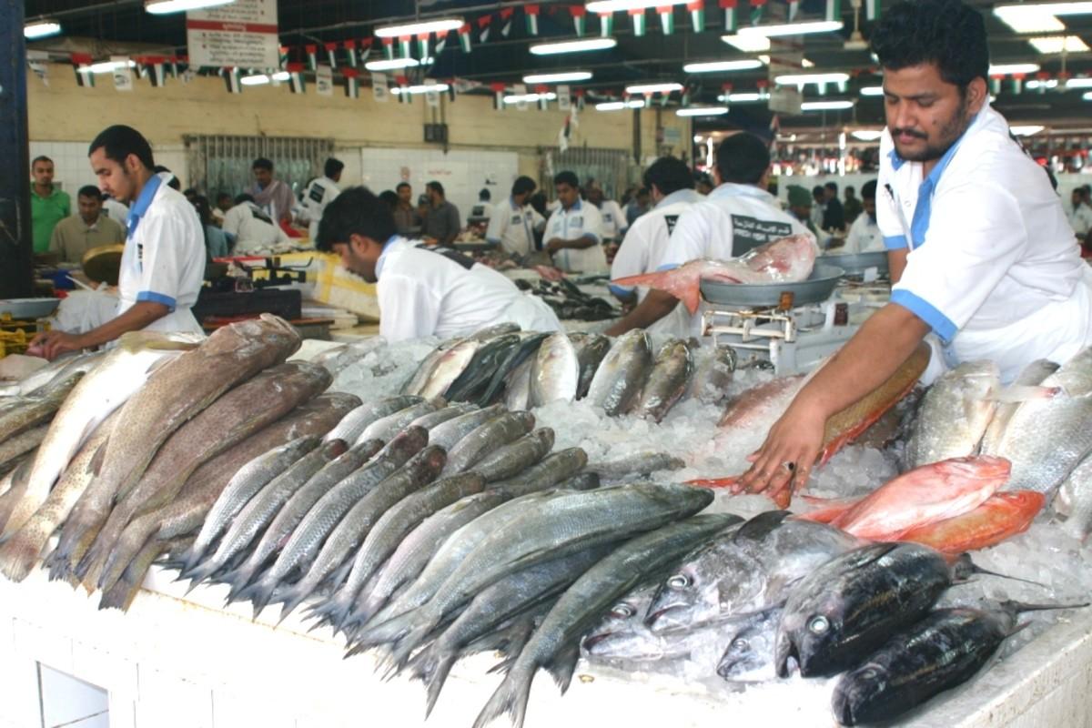 Dubai deira fish market hubpages for Fishing in dubai
