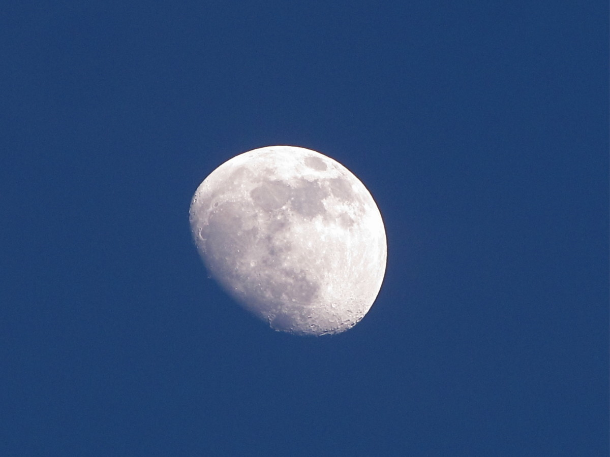 Moon just after sunset