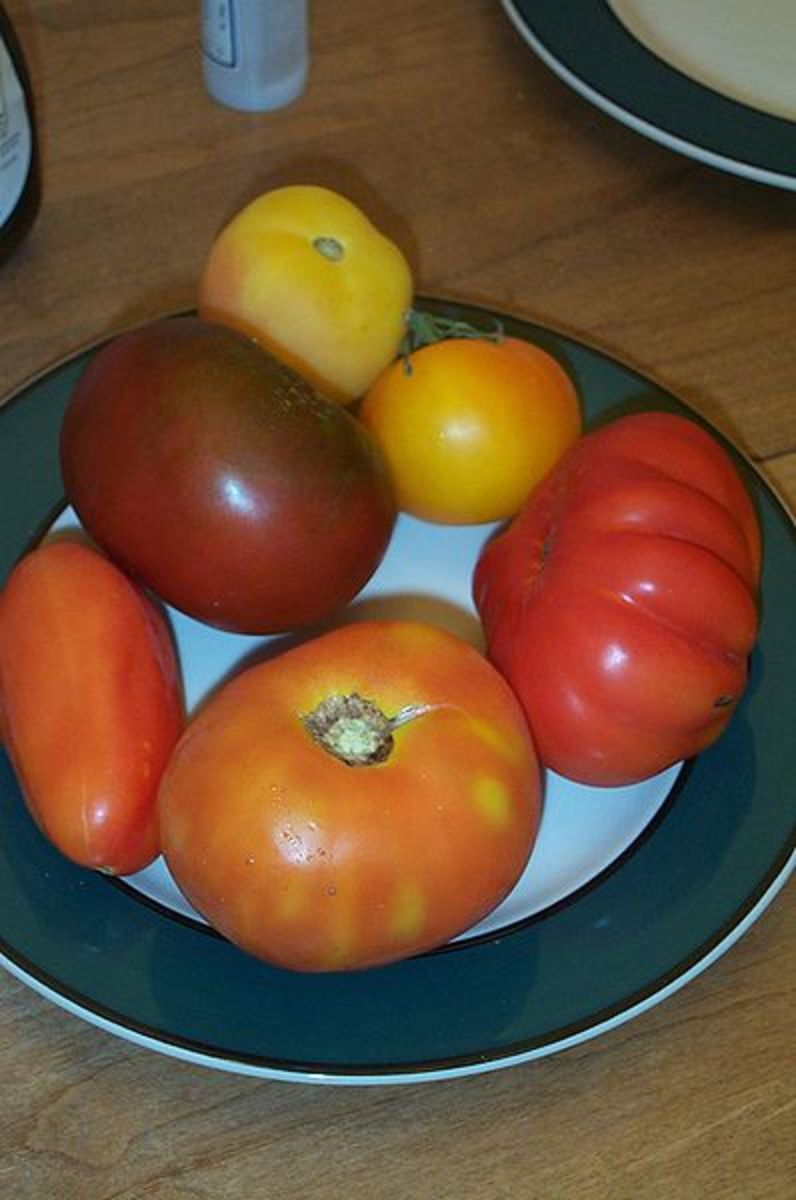 In this photo are a variety of heirloom tomatoes.