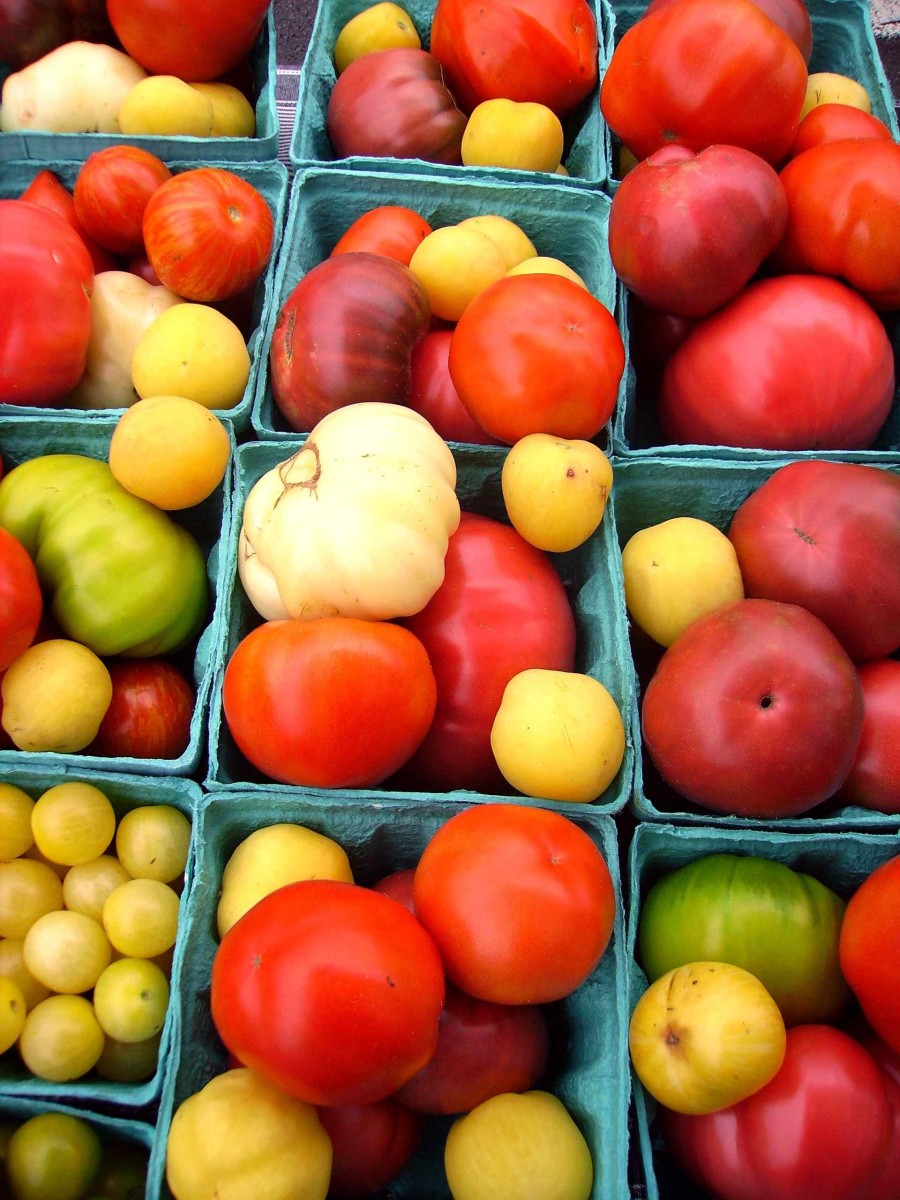 preserving-food-canning-tomatoes