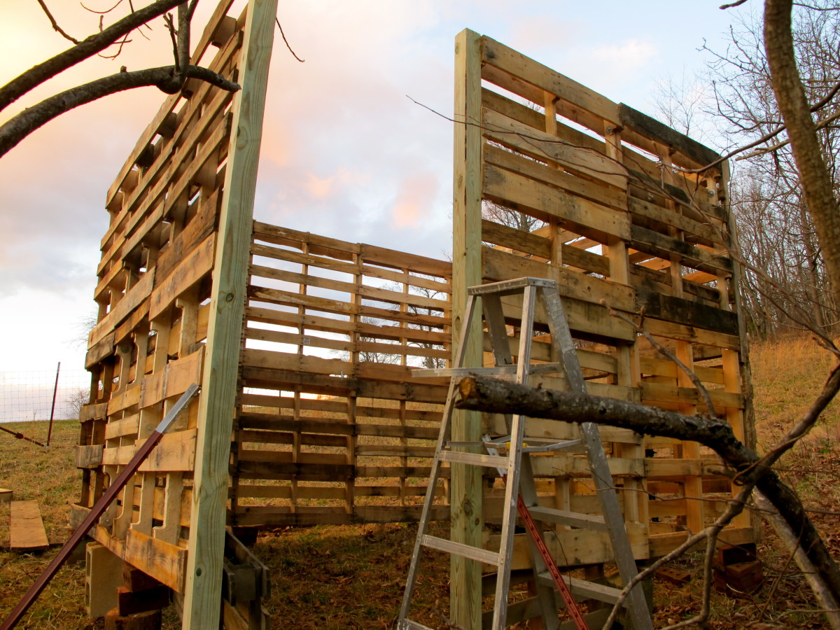 10' x 10' goat shed made from wooden pallets