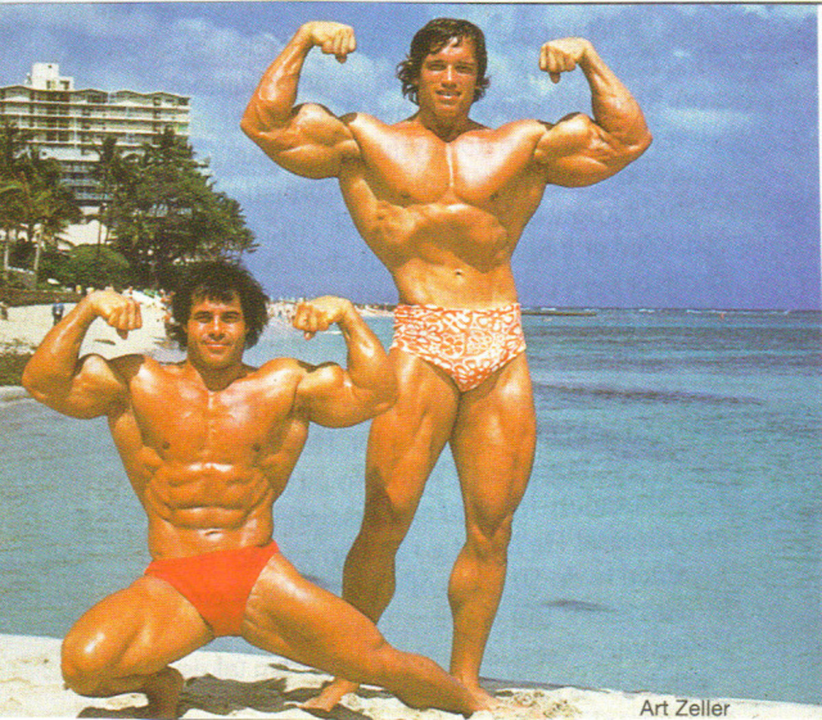 This picture is to enhance what is explained on the left in the text. On the right is Schwarzenegger and on the left is Franco Columbo who is Schwarzenegger's chiropractor now.