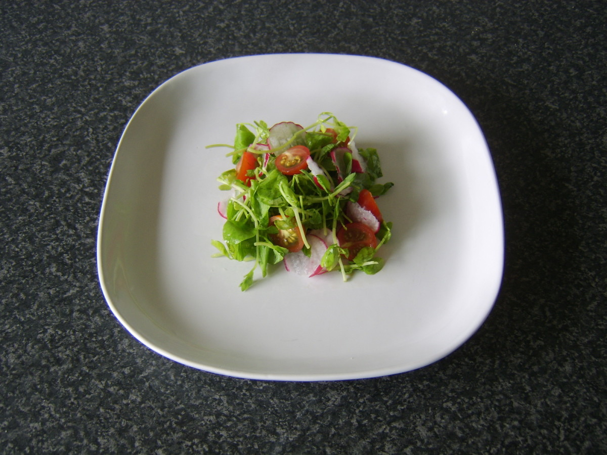 Salad is laid in the centre of a plate