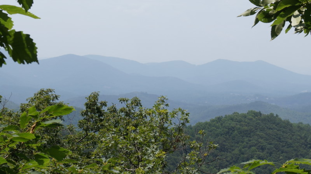 The view, walking along the Mountains to Sea Trail heading toward Ox Creek Road.