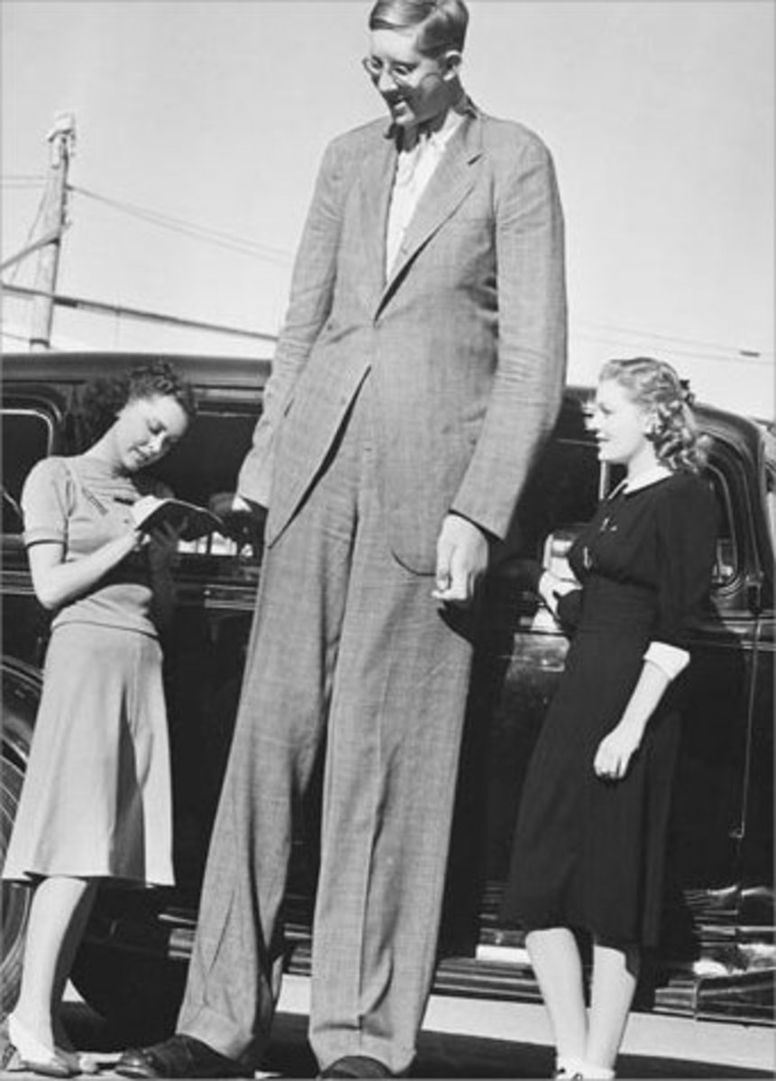 Tallest man ever recorded : Robert Wadlow