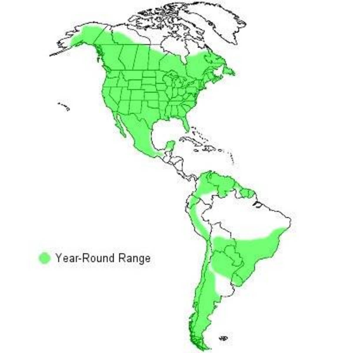 Range of the Great Horned Owl