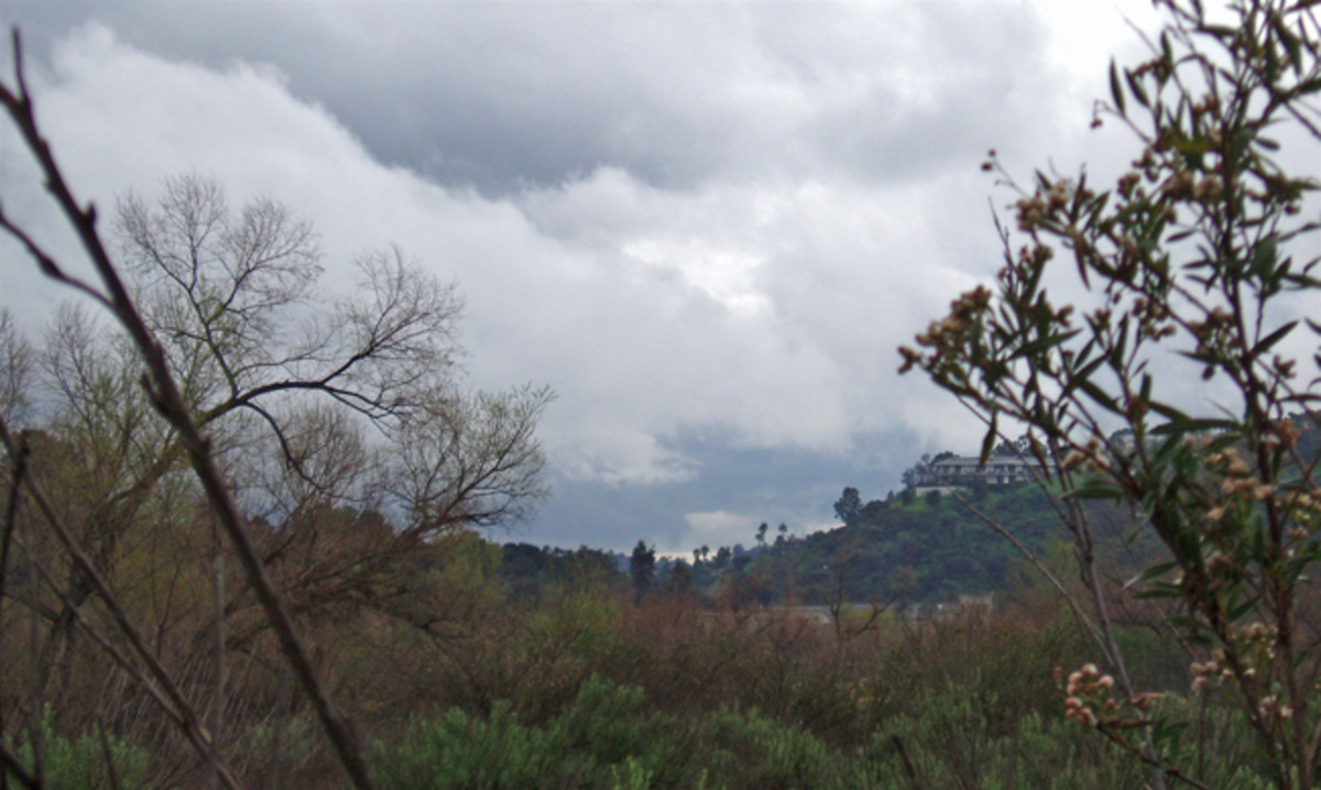 Stormclouds Gathering Near the Foothills