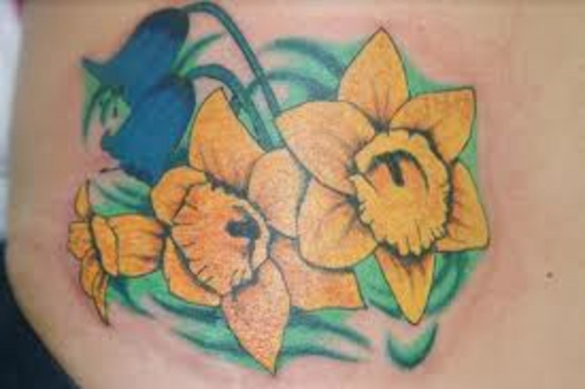 daffodil-tattoos-and-meanings-daffodil-tattoo-designs-and-ideas-daffodil-tattoo-images