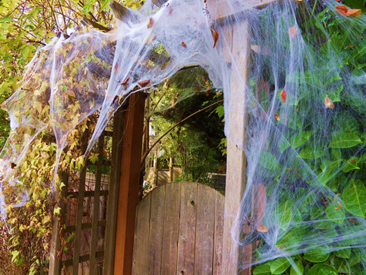 Cobwebs are also a must!