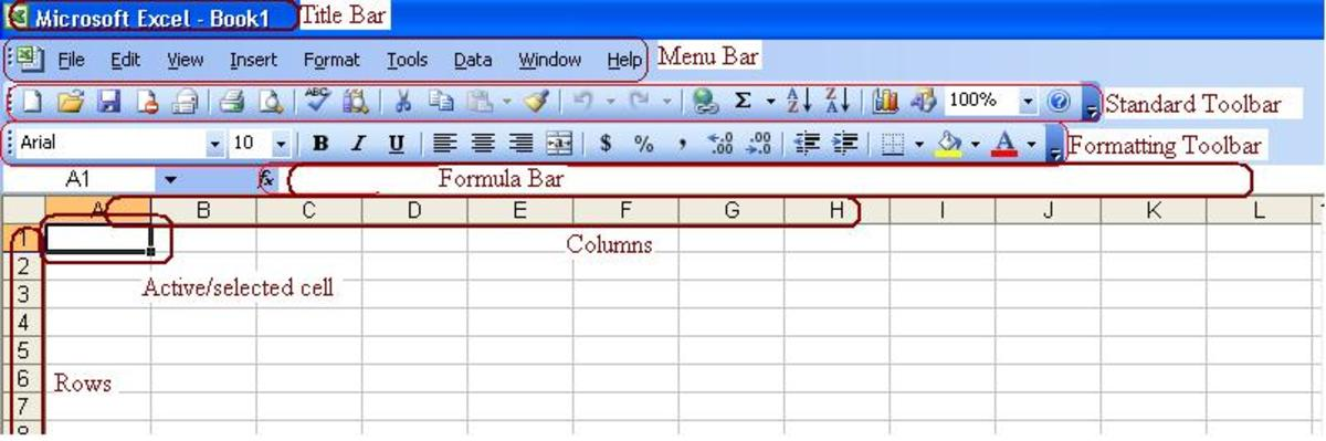 Working with Microsoft Office Excel 2003, Things You Need To Know