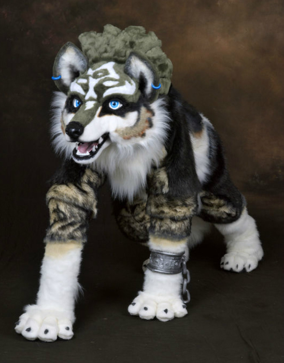 The Wolf Link costume.