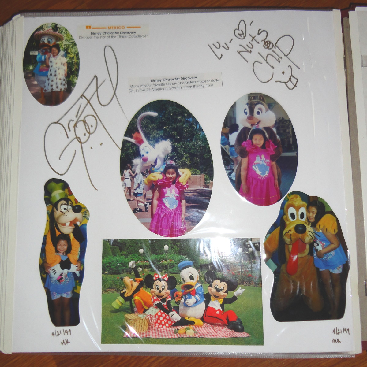 As long as you use an acid free, lignin free pen for the characters to sign, a photo album works great. It's great for pairing signatures with photos if you wish. (Oh, and the pic of Chip isn't shown, just Dale's - but that's OK!