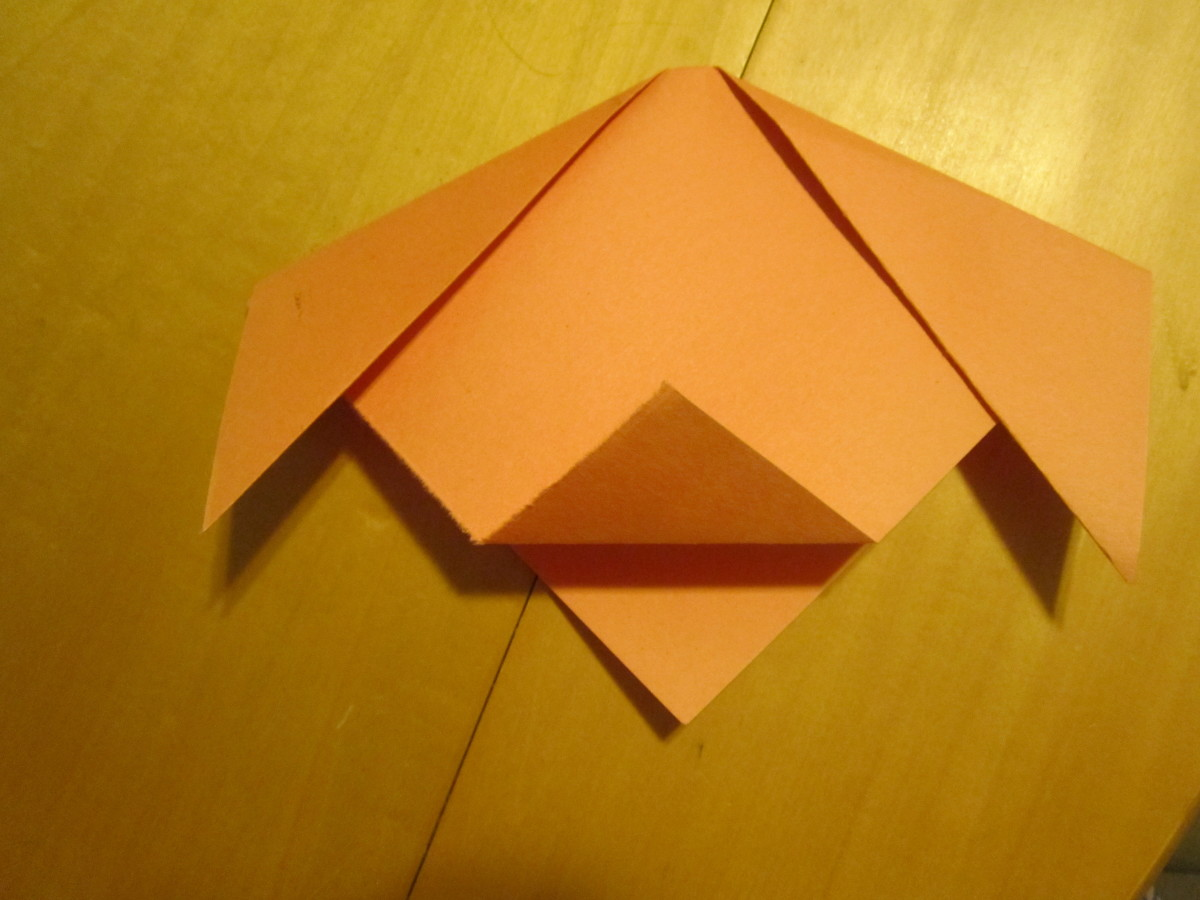 Fold point of triangle up for muzzle.