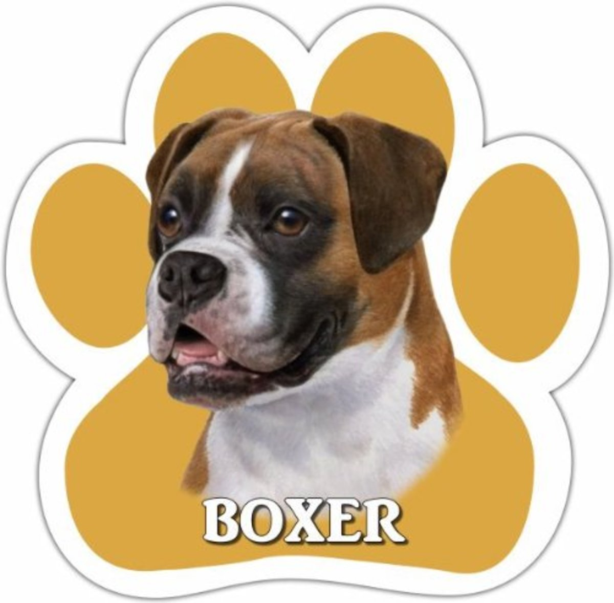 Buy This Car Boxer Magnet on Amazon
