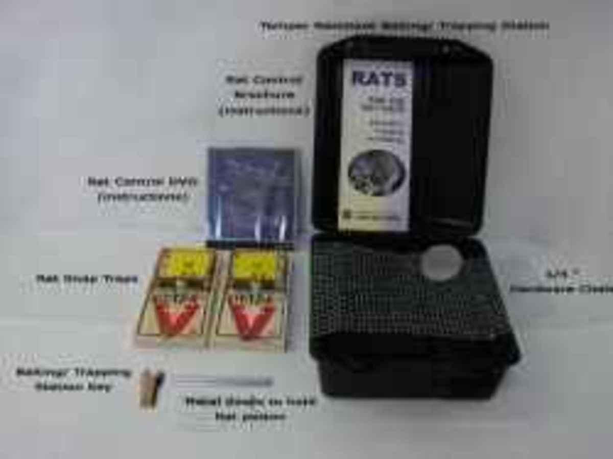 Standard Rat Traps