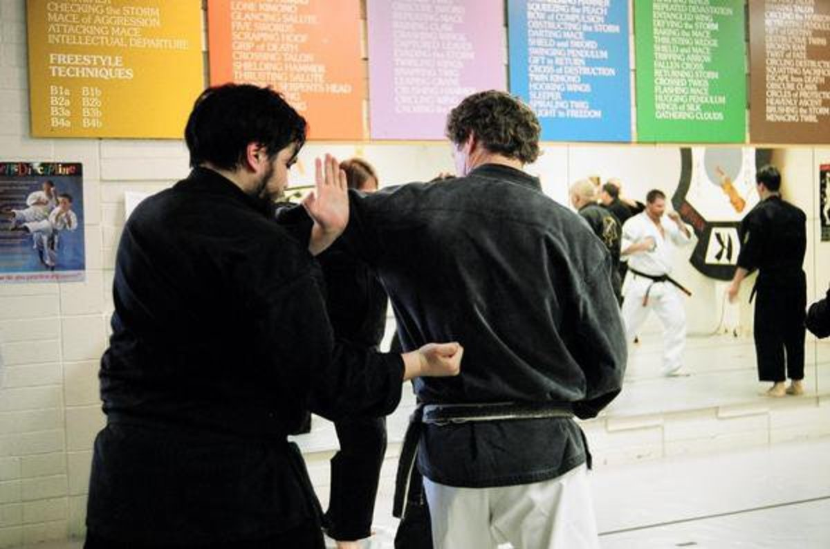 Names of Different Martial Arts Styles