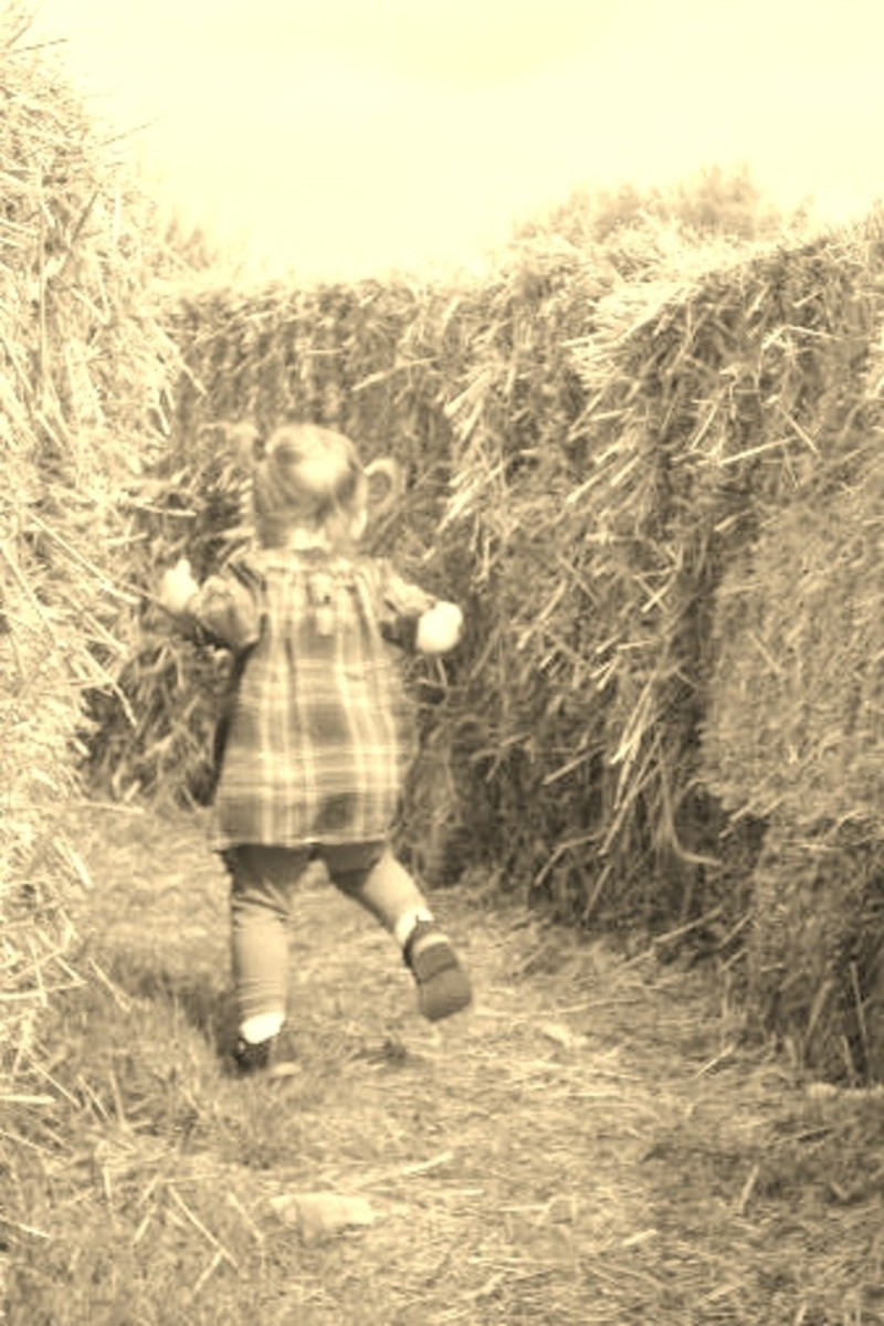 and fall activities like straw mazes
