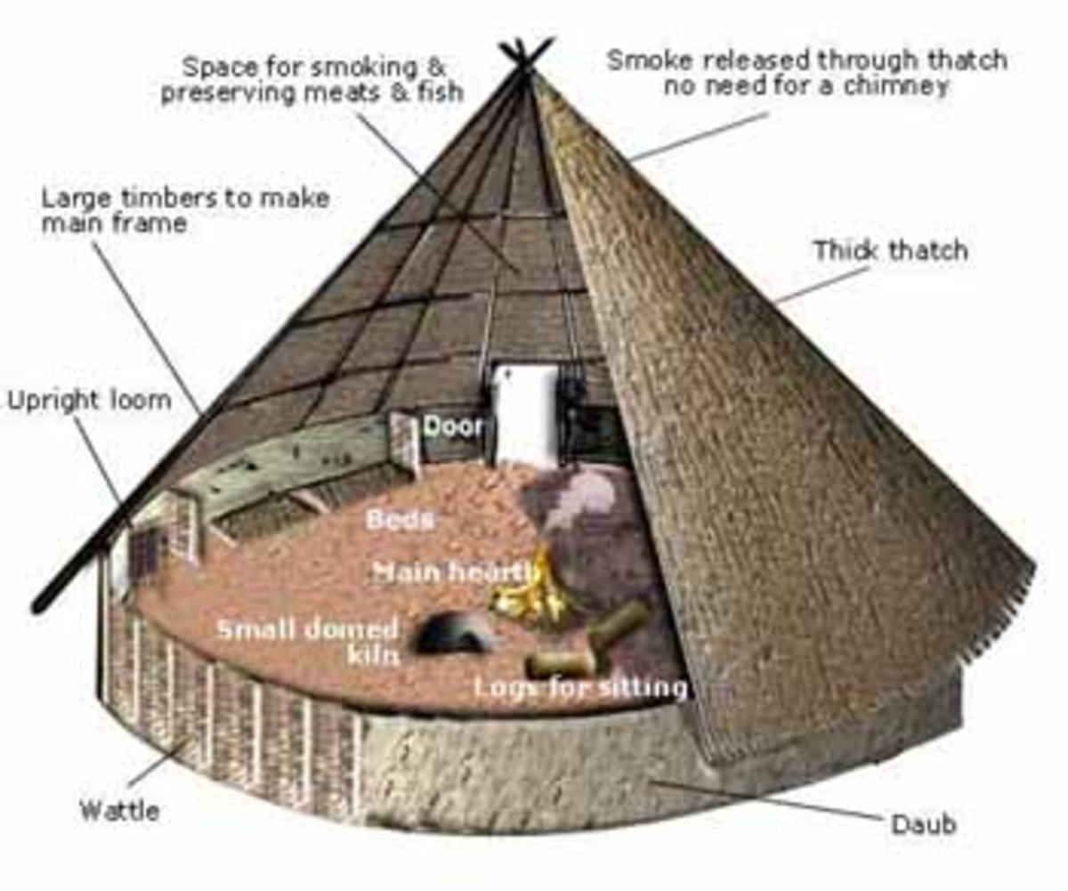 Cutaway of a Celtic round house showing structure and floorspace use